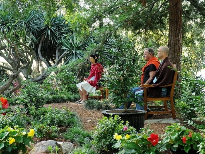 What is Peace - group meditating in nature